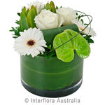 Classique - Designer Arrangement in a Low Glass Vase