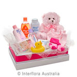 Cuddles for Her - Teddy Bear with a Selection of Baby Care Goods