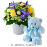 Thomas - Bright Mixed Arrangement with a Teddy Bear