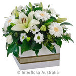 Enchantment - Mixed Box Arrangement