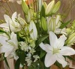 Florist Choice bouquet in whites and green