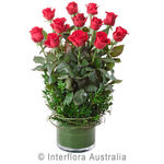 Desire - Arrangement of 12 Long Stemmed Roses in Low Glass Vase
