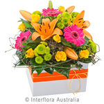 Fiesta - Bright Mixed Box Arrangement