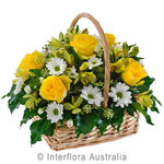 Lemon `n Lime - Petite Mixed Basket