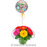Rainbow - Mixed Gerberas in a Ceramic Container with a Balloon